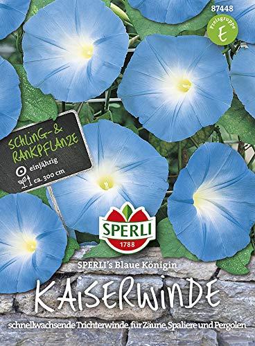 Prunk- oder Trichterwinde Blau von Sperli-Samen