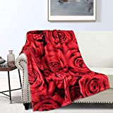 Red Roses Blankets Soft & Comfort Throw Blankets 40 × 50 Inches Decorative Flannel Throws Lightweight for Women, Girls, Bed, Couch, Chair, Car, Office, Camping Traveling