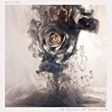 Songtexte von Editors - The Weight of Your Love