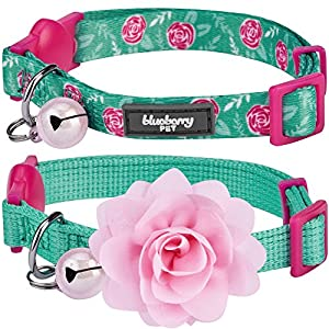 Blueberry Pet Pack of 2 Cat Collars, The Power of All in One Relaxing Jungle Green Adjustable Breakaway Cat Collar for Girl & Boy with Bell & Detachable Flower, Neck 9″-13″