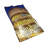 DJNGN Toallas de Mano, El Coliseo de Noche Roma Italia, Estampado de patrón Toalla de baño Suave Altamente Absorbente para baño, Hotel, Gimnasio y SPA 27 'x15'