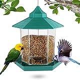 Eyscoco Mangeoire à oiseaux à suspendre, distributeur automatique de nourriture à suspendre pour oiseaux de petite à moyenne taille - Mangeoire transparente pour oiseaux sauvages