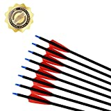 UMULIN Archery Hunting Arrows 30 Inch Carbon Target Arrows for Shooting with Recurve Compound Bows (Pack of 12)