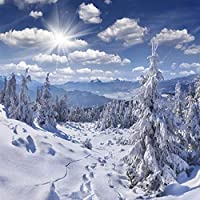 カスタム壁画壁紙青い空と白い雲雪景色フレスコリビングルームテレビソファベッドルーム-150x120cm