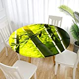 Fansu Impermeable Redondo Mantel con Borde Elástico, 3D Impresión Mantel de Mesa Elástica Ajustada Cubierta de Mesa para Picnic Comedor Cocina Restaurante Cena (Bambú Verde,Diámetro 100cm)