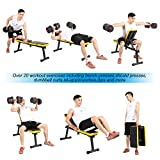 SogesPower Folding Dumbbell Bench Height Adjustable Incline Exercise Bench 660 lbs Weight Capacity