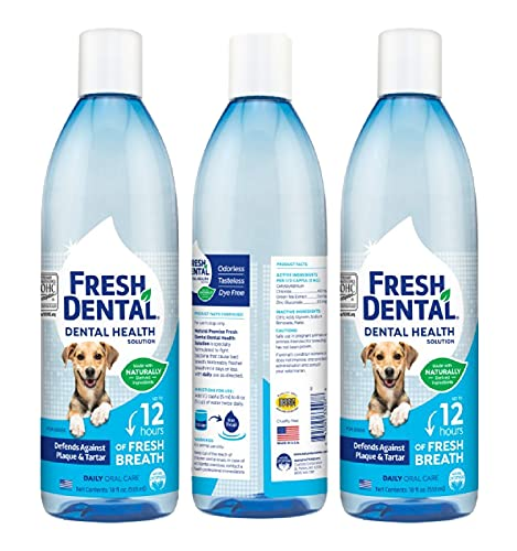 Naturel Promise Fresh Dental Water Additive – Dental Health Solution for Dogs – Easy to Use – Helps Clean Teeth – Freshens Breath Up to 12 Hours – No Brushing Required – 18 Fl Oz, 3 Pack