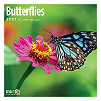 Bright Day Calendars 2021蝶の壁カレンダー バイ 明るい日、12 x 12 インチ、昆虫の花