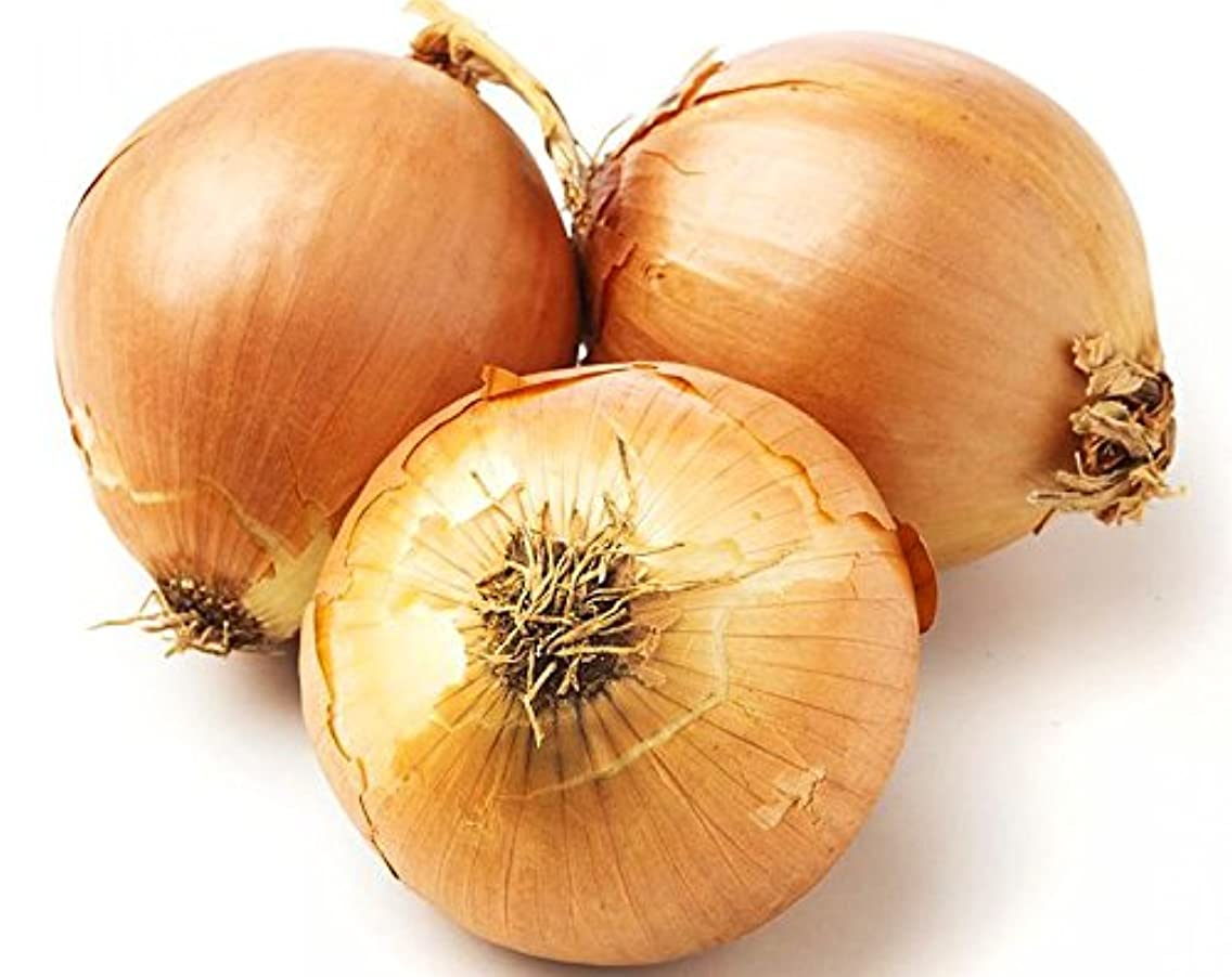 100+ ORGANICALLY Grown Giant Walla Walla Sweet Onion Seeds Heirloom Non-GMO, Allium cepa, Mild and Delicious, from USA