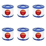 Filtro de tina caliente tipo VI, para Coleman SaluSpa 90352E filtros inflables bomba de filtro de piscina, cartucho de filtro para Bestway Lay-Z-Spa 58323 (6 unidades)
