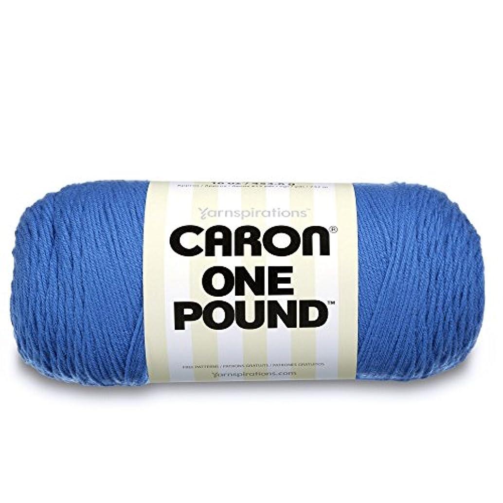 Caron  One Pound Solids Yarn - (4) Medium Gauge 100% Acrylic - 16 oz -  Pale Royal Blue- For Crochet, Knitting & Crafting
