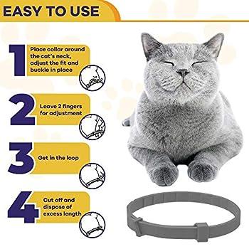 Collier apaisant pour chats CHUWPI - Colliers calmes aux phéromones, soulagement de l'anxiété pour petits chats moyens et grands - Réglable et étanche avec 100% naturel
