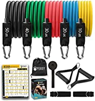 FEGSY Resistance Bands Set for Exercise, Stretching, and Workout Toning Tube Kit with Foam Handles, Door Anchor, Ankle...