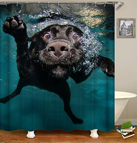 Larry'co Funny Swimming Dog Shower Curtain Animal Fabric Waterproof Shower Curtain for Bathroom Curtain with Hooks Polyester Interesting Photograph Picture Unique 72''x72''
