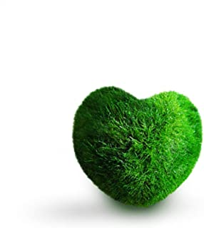 Luffy Heart Marimo Moss Balls, Aquarium Decor or a Perfect Heirloom Gift, Symbolize Eternal Love, Good Luck Charm, Loved by Aquarium Pets, Keep Fish and Plants Healthy, 1 Pack
