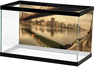 bybyhome Aquarium 3D Backdrops United States,Queensboro Bridge Spanning The East River in New York City Serene Scenery,Tan Egg Shell Underwater World Backdrop