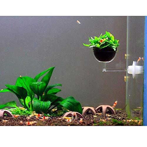 Cikonielf Support pour plantes d'aquarium - Support pour plantes aquatiques - Verre pour plantes aquatiques - Porte-gobelet avec ventouse pour décoration de paysage d'aquarium