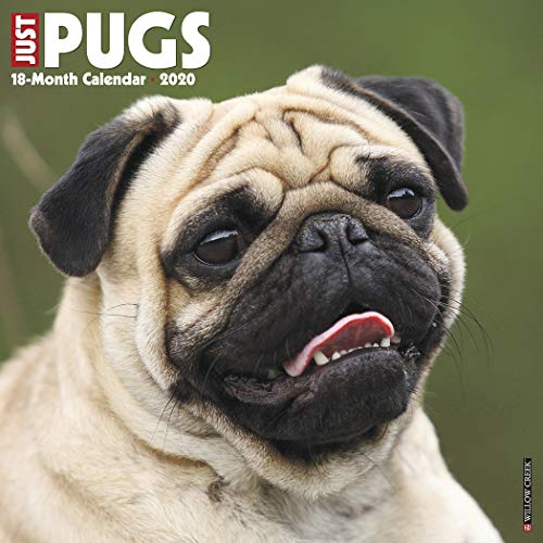 Just Pugs 2020 Wall Calendar (Dog Breed Calendar)