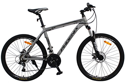 PHOENIX Bicycle PF 20 Inch Aluminum Portable and Folding Bike with Disk Brake and Shimano 7 Speed