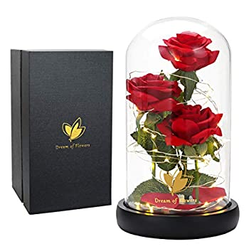 Beauty and The Beast Rose Flowers Artificial Flower Rose Gift Led Light String in Glass Dome Warm Light Mode Unique Gift for Her Anniversary Wedding Multi Use for Home/Office or Home Decorations