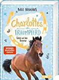 Charlottes Traumpferd: Gefahr auf dem Reiterhof