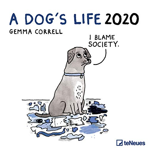 A Dog's Life 2020 30 x 30 Grid Calendar (English, German, French, Italian and Spanish Edition)