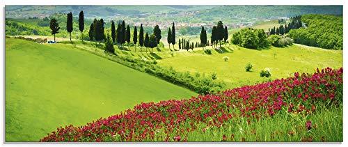 Artland Glasbilder Wandbild Glas Bild einteilig 125x50 cm Querformat Natur Landschaft Gebirge Blumen...