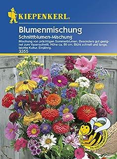 Blumenmischung - Schnittblumen von Kiepenkerl