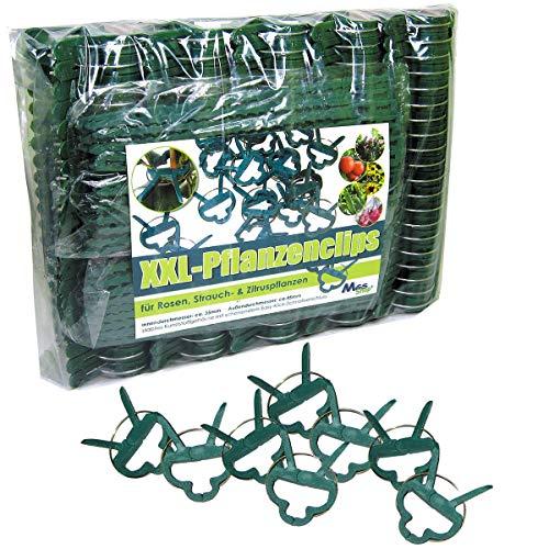 MGS SHOP Pflanzenclips 100 Stück stabile Clips Pflanzenklammern für kleine & große Triebe Spaliere Rosenbögen Rankhilfen (100er-Set XXL)