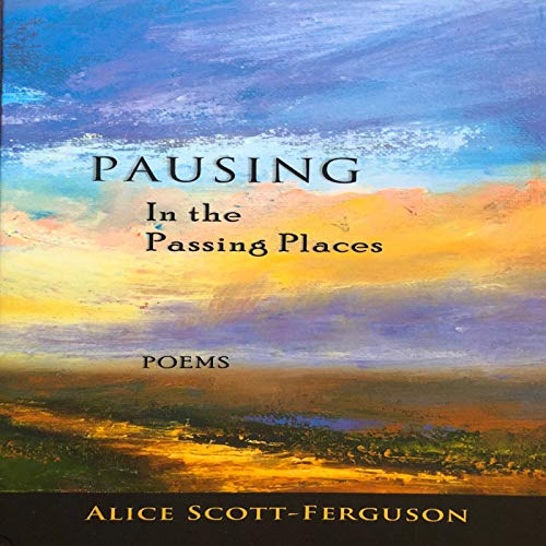 Pausing in the Passing Places audiobook cover art