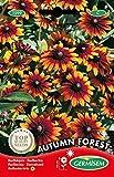 Germisem Autumn Forest Semillas de Equinácea 1 g