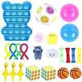 Herefun Sensorial Fidget Juguete, 23Pcs Juguetes Sensoriales Niños Kit, Sensory Toy Juguetes Antiestrés, Fidget Sensory Toys para Niños, Alivia el Estrés y la Ansiedad Fidget Toy (Estilo-A)