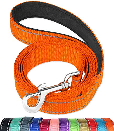 FunTags 6FT Reflective Dog Leash with Soft Padded Handle for Training,Walking Lead for Large & Medium Dog,1 Inch Wide,Orange
