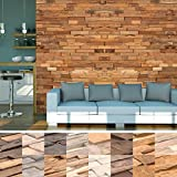 HORI® Wandverkleidung Wandpaneele aus Holz in 3D Optik I Modell: Logan Teak I Inhalt: 2m²
