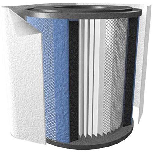 austin air hm 200 filter - 2