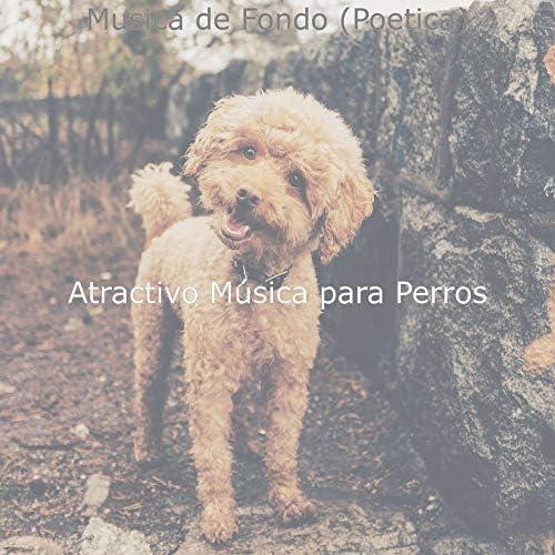 Atractivo Música para Perros
