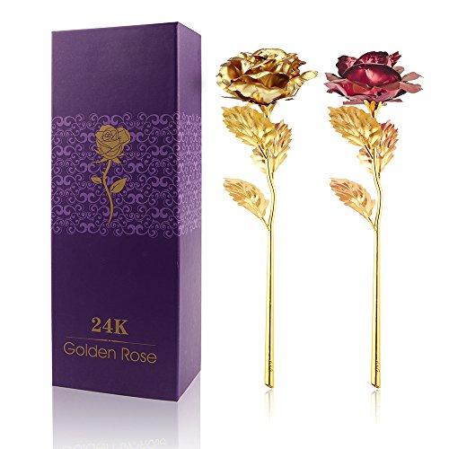 Vingtank 2 Pack 24K Gold Suipped Real Rose con caja de regalo, el mejor regalo romántico para la esposa, novia, cumpleaños, día de la madre, aniversario de bodas, día de San Valentín (Gold+red)