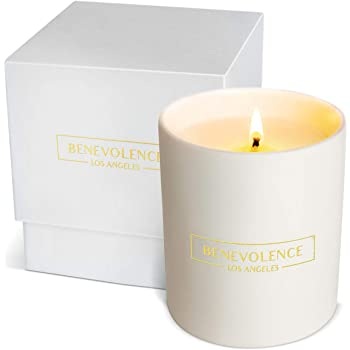 Premium Soy Candles Scented | Relaxing Scented Candles with Rich Fragrance of Jasmine & Sandalwood | 45 Hour Burn, Long Lasting, Highly Scented, All Natural Soy Candles, Aromatherapy Candle White Jar
