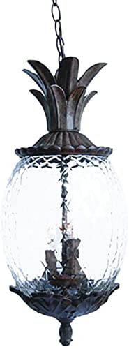 discount Acclaim discount discount 7516BC Lanai Collection 3-Light Outdoor Light Fixture Hanging Lantern, Black Coral outlet sale