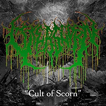 Cult of Scorn