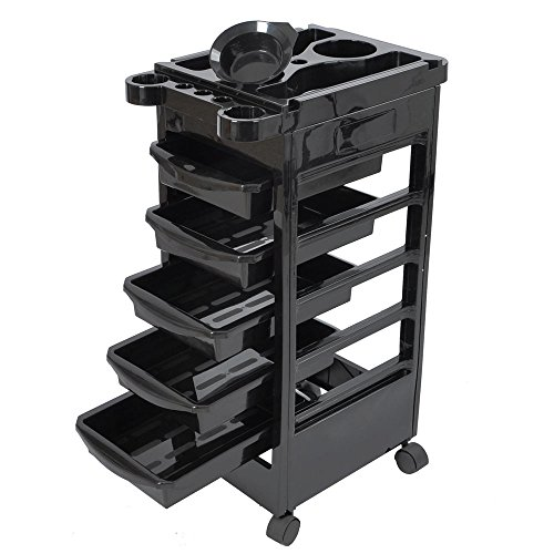 Salon SPA Trolley Storage Cart Coloring Beauty Salon Hair Dryer Holder with 5 Drawers for Tool Storage