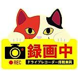かわいい猫のドライブレコーダー録画中マグネットサイン 三毛猫