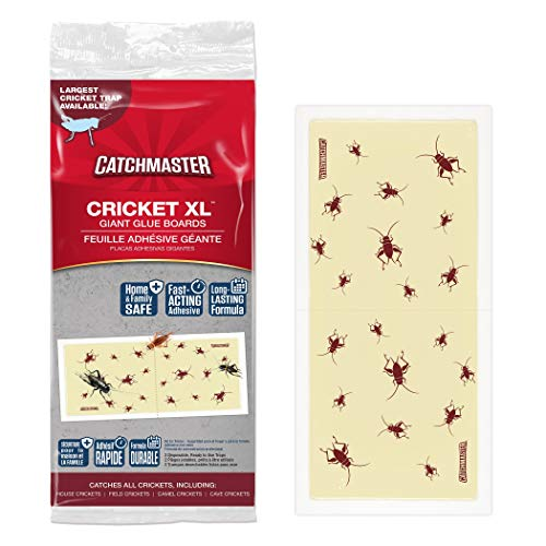 Catchmaster Cricket XL Largest Cricket Trap Available  6 Glue Traps Product Name