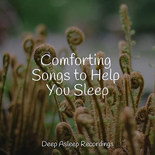 Exam Study Classical Music, Relaxing Spa Music & Saludo al Sol Sonido Relajante