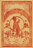 踊ろうマチルダ LIVE at 梅田シャングリラ 2011 [DVD] image