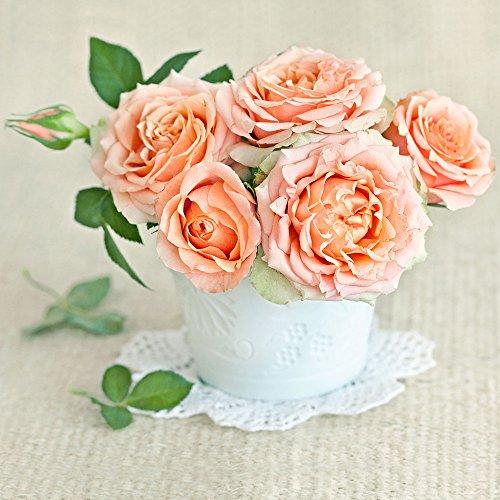 20 servetten bloempot rozen oranje/bloemen/bruiloft 33x33cm