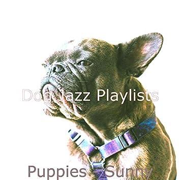 Puppies - Sunny