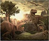 INTIMO Jurassic Dinosaur Blanket Super Soft Silk Touch Plush Fleece Throw 50' X 60'
