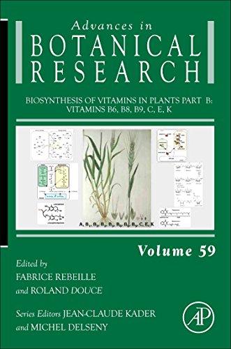 Biosynthesis of Vitamins in Plants, Part B: Vitamins B6, B8, B9, C, E, K