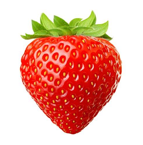 Bemo Liquid - Premium eLiquid für deine E-Zigarette - über 200 Geschmacksrichtungen! (Erdbeere)